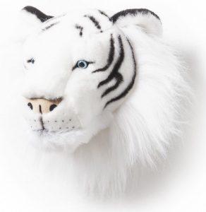 tigre-blanc